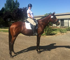 Molly and Belle June Dressage Derby